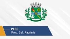 Seletivo de Paulínia   PEB I