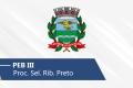 Seletivo de Ribeirão Preto | PEB III
