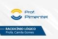 Raciocínio Logico | Prof. Camilla Gomes