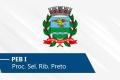 Seletivo de Ribeirão Preto | PEB I