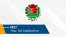 Seletivo de Sertãozinho | PEB I (On-line)