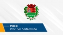 Seletivo de Sertãozinho | PEB II (On-line)