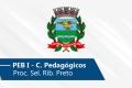 Seletivo de Ribeirão Preto | PEB I (Conh. Pedagógicos)