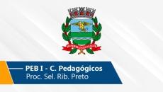 Seletivo de Ribeirão Preto | PEB I (Conh. Pedagógicos) (On-line)