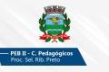 Seletivo de Ribeirão Preto | PEB II (Conh. Pedagógicos)