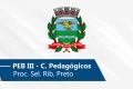 Seletivo de Ribeirão Preto | PEB III (Conh. Pedagógicos)
